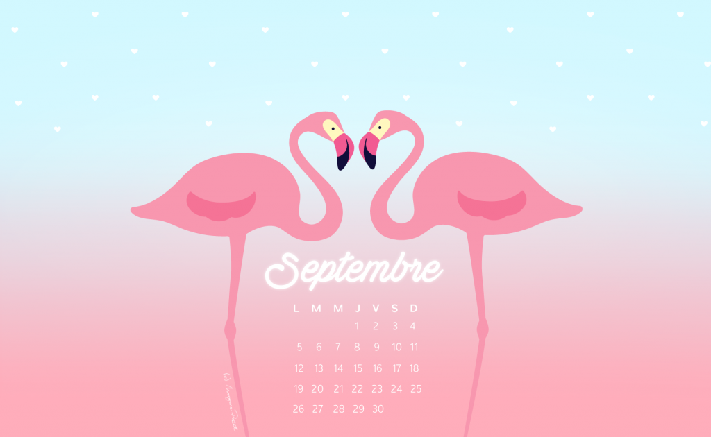 wall_september16