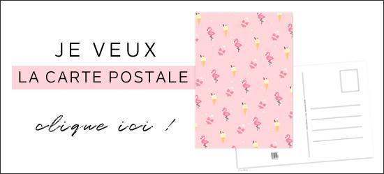 carte postale flamant rose glace summer