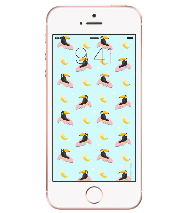 fond d'écran palmier toucan banane aout 2017