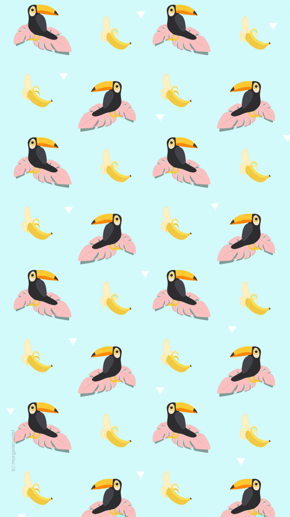 wallpaper summer toucan
