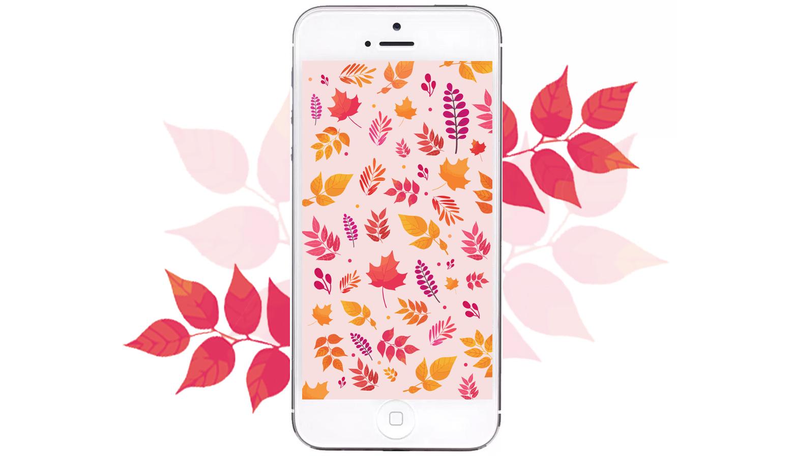 fond decran automne telechargement gratuit