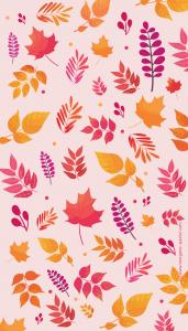 wallpaper automne octobre_iphone 7