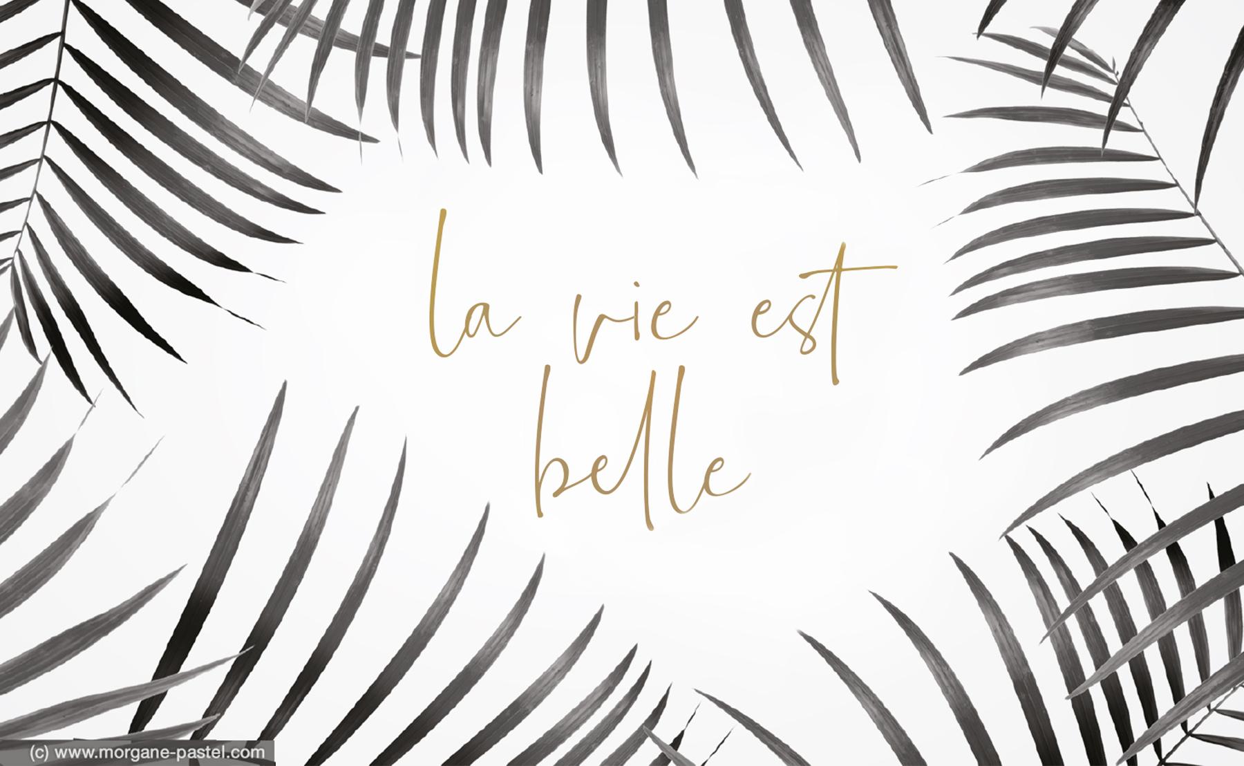 Fond D Ecran La Vie Est Belle Avril 2019