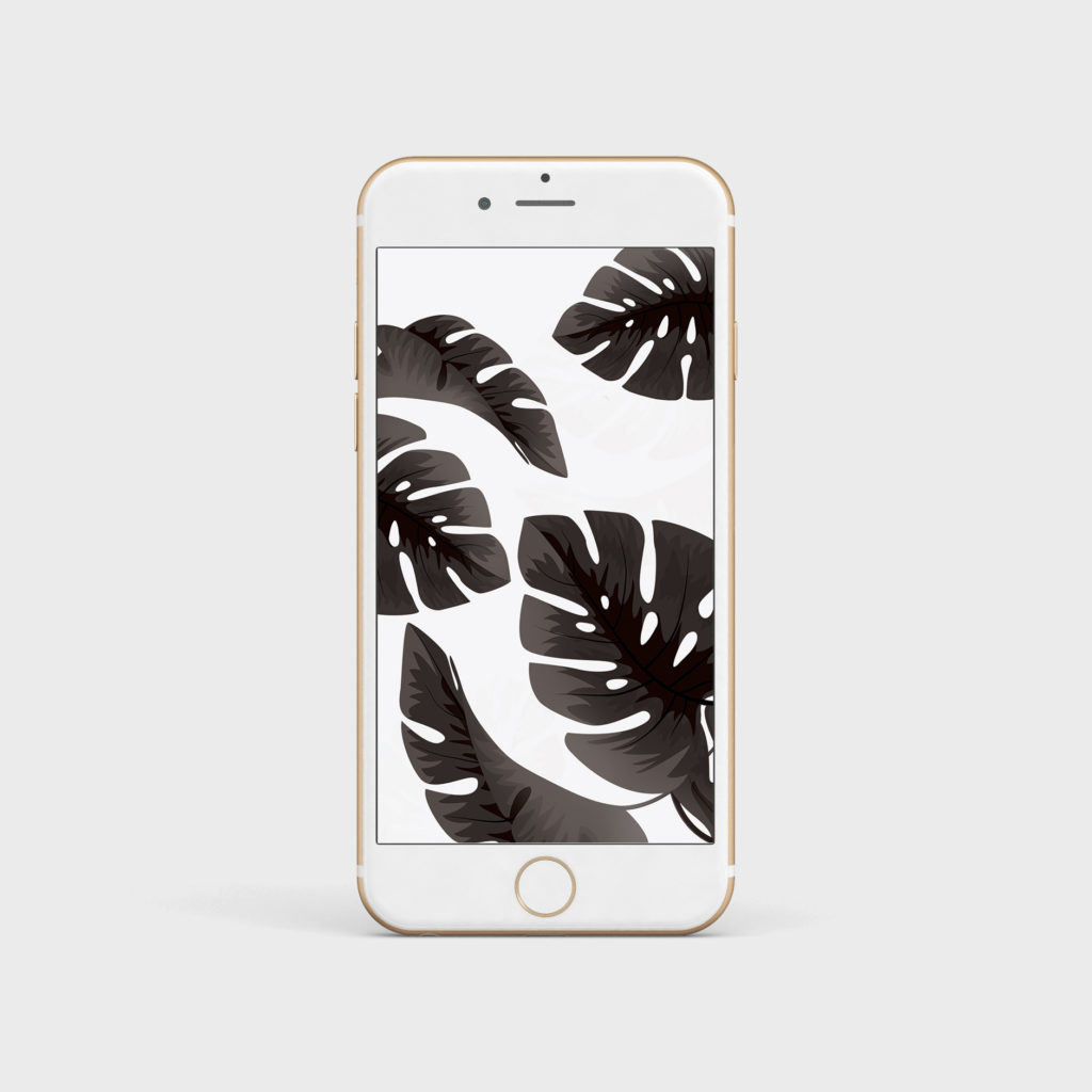 wallpaper palmiers tropical