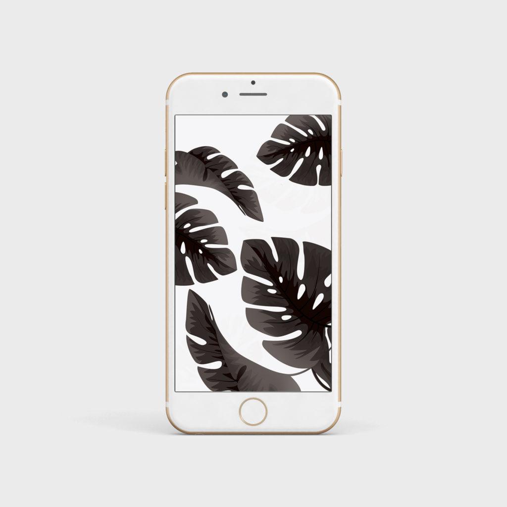 wallpaper palmiers tropical